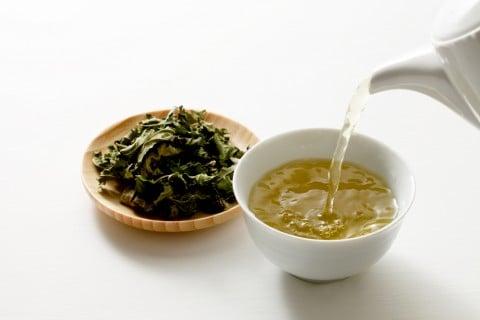 桑の葉 クワノハ お茶 マルベリー