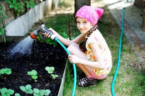 水やり 地植え