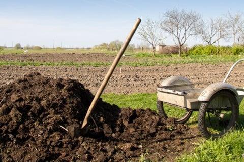 地植え 土作り 畑