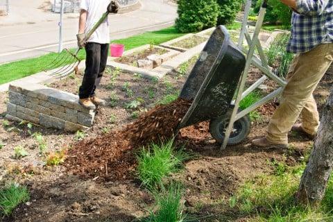 マルチング 土作り 庭 地植え