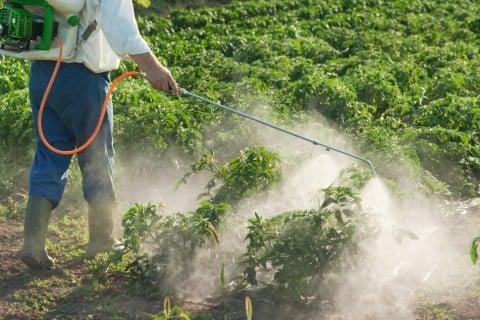 水やり 霧吹き 薬剤 防虫 害虫 散布 農薬2