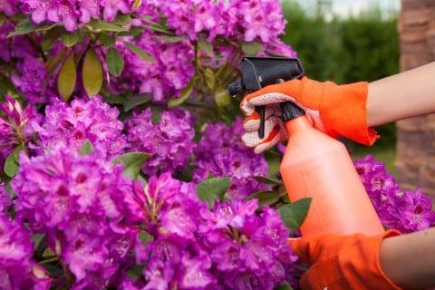 水やり 霧吹き 薬剤 防虫 害虫 散布 農薬1