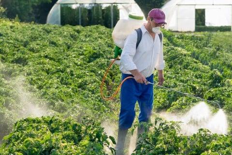 水やり 霧吹き 薬剤 防虫 害虫 散布 農薬3