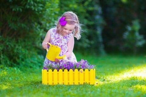 紫 花 ガーデニング 寄せ植え