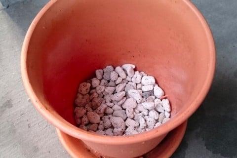 鉢植え 軽石