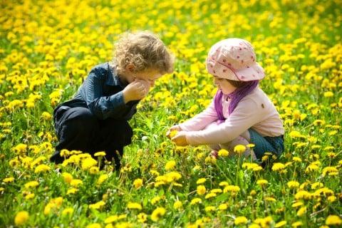 子供 カップル お花畑