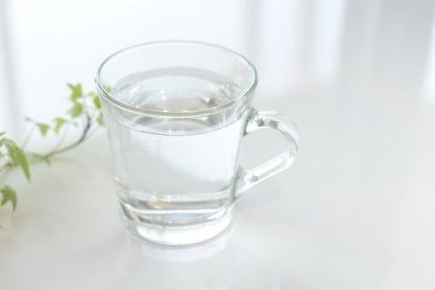 水耕栽培 コップ 水