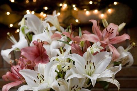 ユリ 花束
