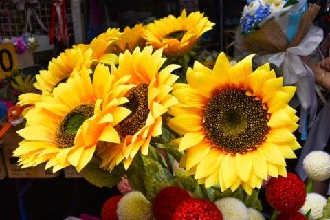 ひまわり 花束