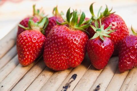 イチゴ いちご 苺
