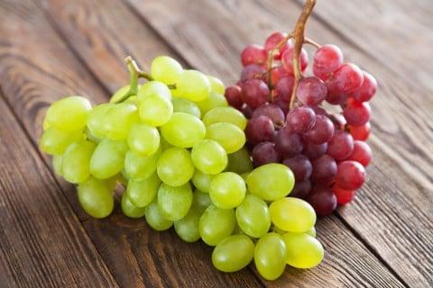 ブドウ 種類 葡萄
