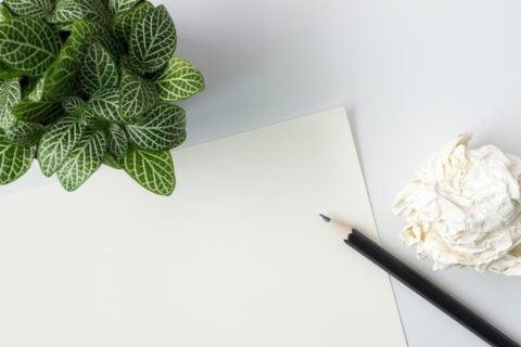 机 観葉植物 ペペロミア