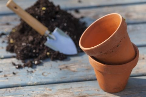 鉢植え 準備 土作り