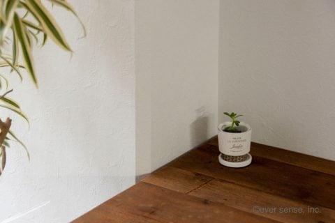オリジナル グッズ 多肉植物 セダム 挿し木 ハサミ 植木鉢 (21)