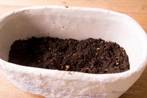 オリジナル アイビー 寄せ植え 土 鉢