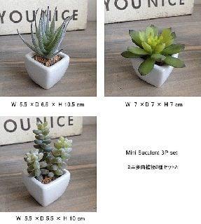 要出典-消臭-ミニ多肉植物-3種セットA-フェイクグリーン-インテリア-造花-光触媒-CT触媒-観葉植物-