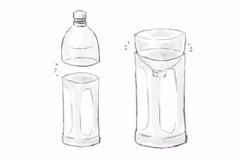 ペットボトル 水栽培