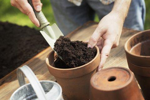 鉢 植え替え 土 シャベル 苗植え 鉢植え