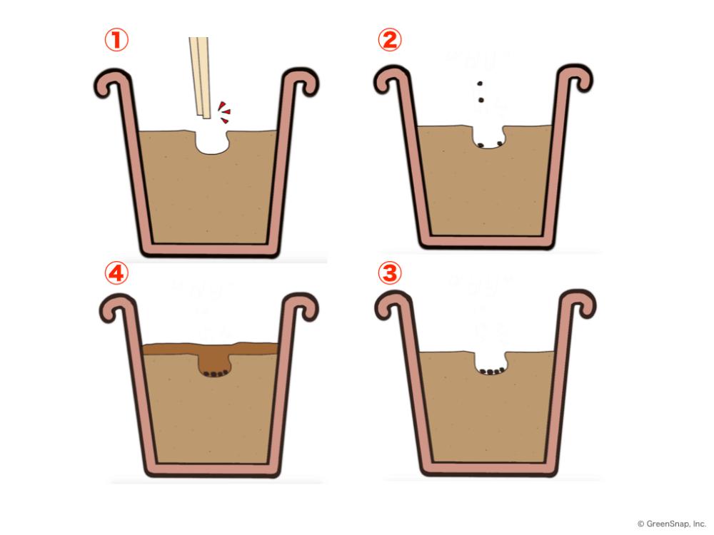 鉢植えに穴を開けて種まきをしているイラスト画像