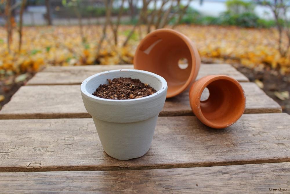 鉢植えと土、植物の栽培道具たち