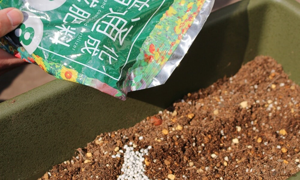 プランターの土に肥料を与えている画像