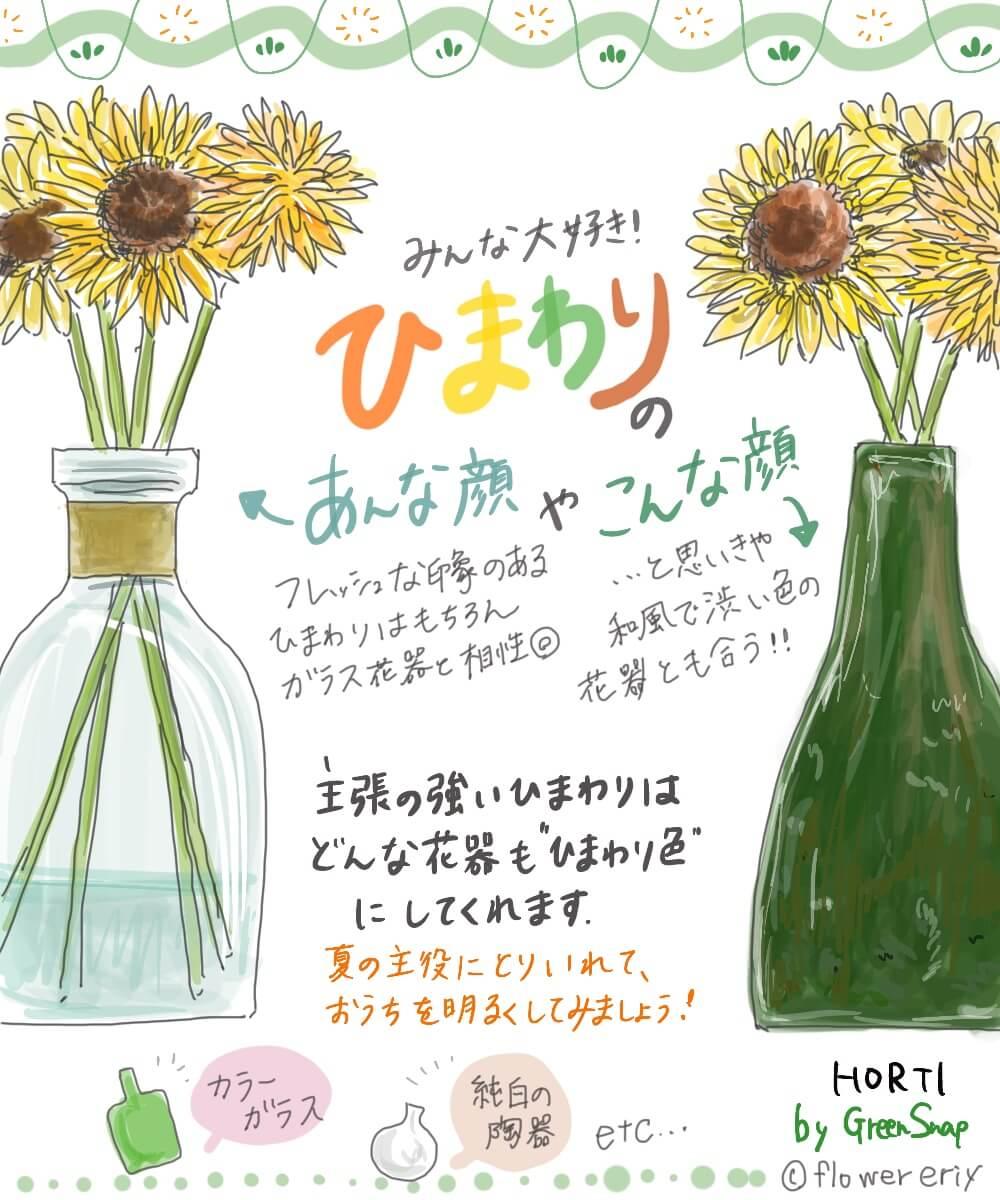 【#エリの花日記 〜vol.8〜】夏の主役!みんな大好きひまわりの楽しみ方