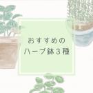 エリの花日記 バジル ミント ローズマリー