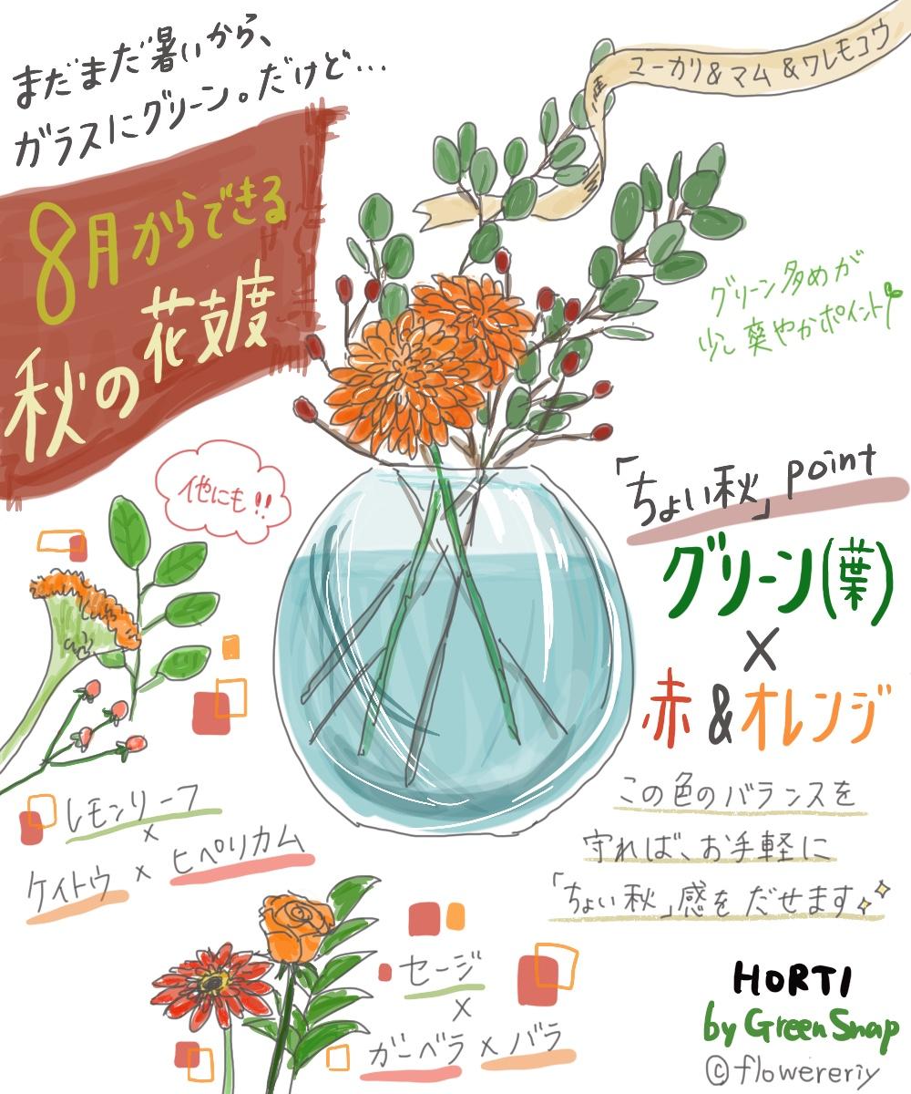 まだまだ暑くても秋を感じたい!8月からできる花の秋支度【#エリの花日記 〜vol.12〜】