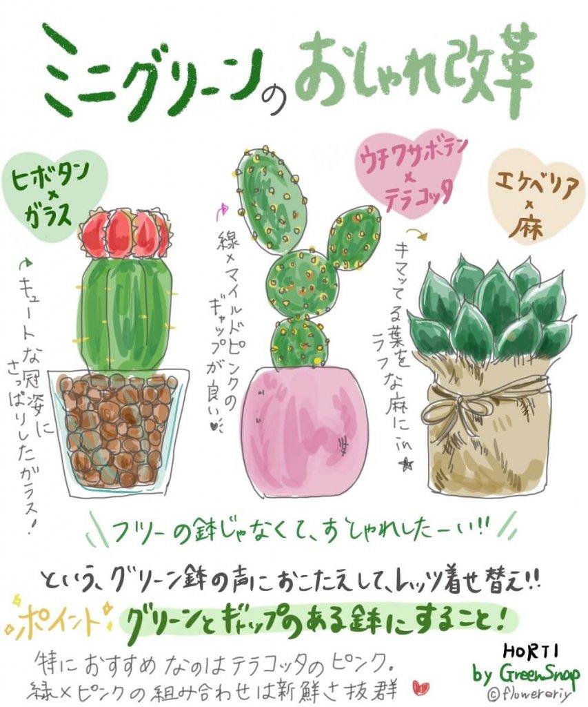 格好良くも、可愛くも自由自在!ミニグリーンをおしゃれに飾ろう【#エリの花日記 〜vol.13〜】