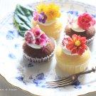 hanaの植物あそび エディブルフラワー 食用花