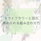 エリの花日記
