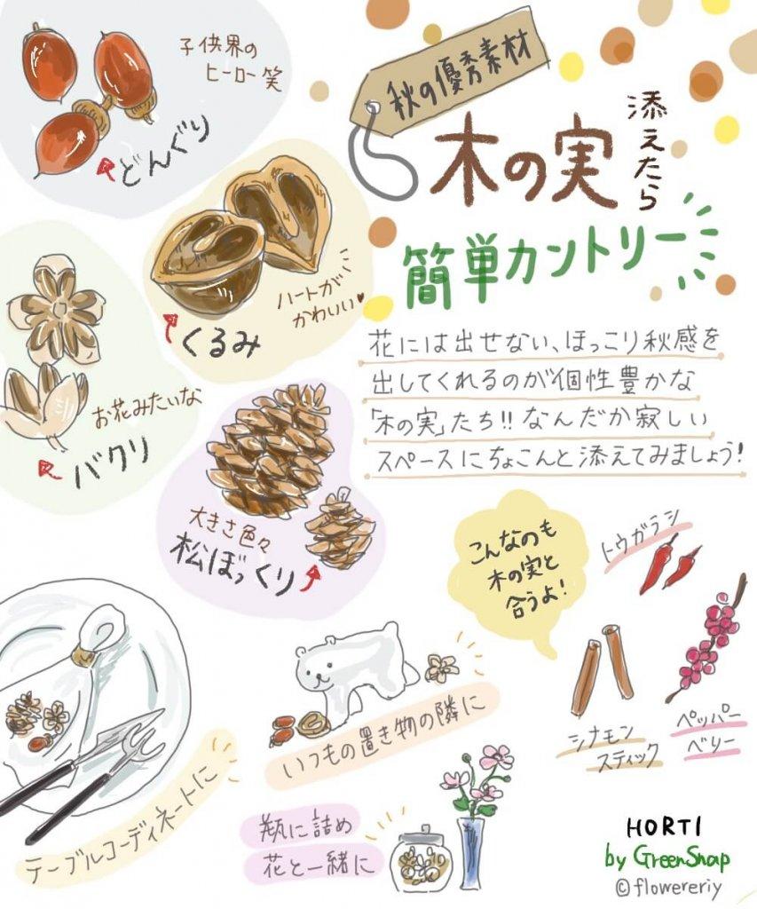 ほっこり可愛い「木の実」を添えるだけで、秋のインテリアが簡単に作れる!【#エリの花日記 〜vol.18〜】