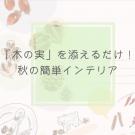 エリの花日記 木の実