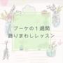 hanaike アスター マム 生け花