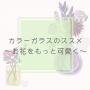 ウチワサボテン エケベリア エリの花日記 ヒボタン ミニグリーン