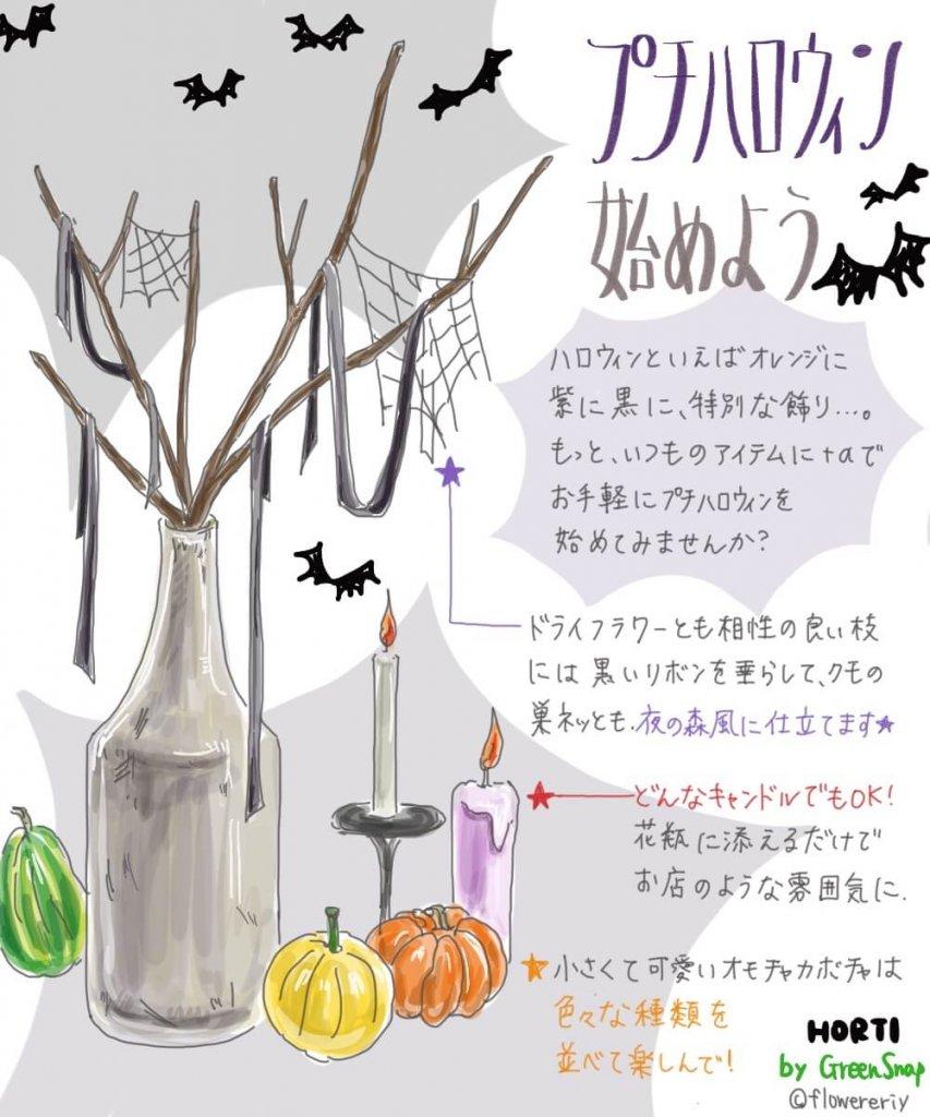 簡単にちょこっとハロウィンを!プチハロウィンデコレーションを試してみよう!【#エリの花日記 〜vol.22〜】
