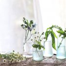 hanaの植物あそび アレンジ ハンドメイド 簡単DIY