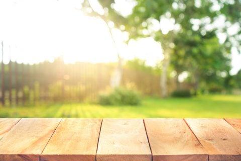 庭木 ガーデニング 日光2