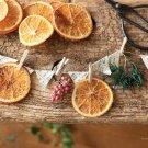 hanaの植物あそび オレンジドライ 簡単DIY
