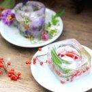 hanaの植物あそび ハンドメイド ビオラ 万両 千両 簡単DIY