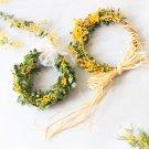 hanaの植物あそび ギンヨウアカシア ミモザ